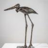 Walking Stork