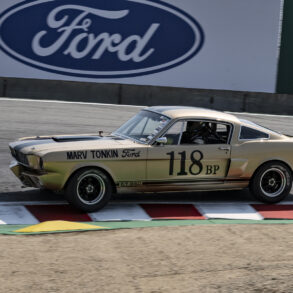 Peter Reed's 1966 Shelby GT350 289 approaches the Corkscrew Saturday morning. ©2021 Dennis Gray