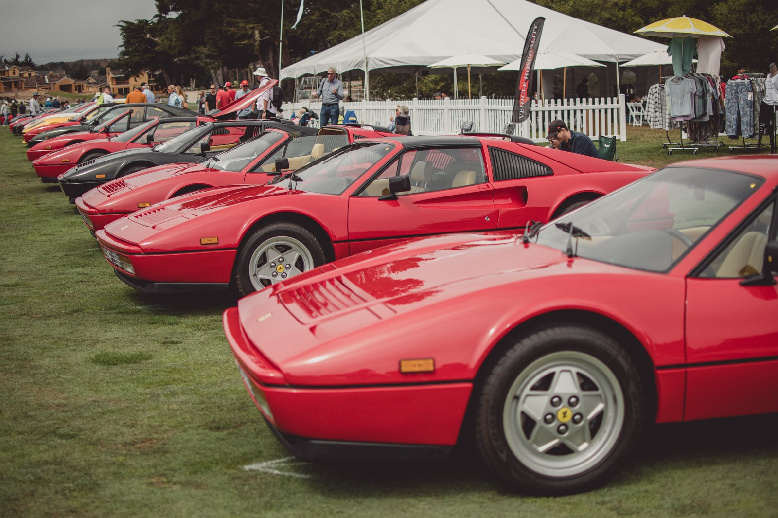 A group of Ferraris in display