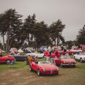 A group of Alfa Romeo cars